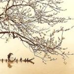 La evolución del arte en la historia de Japón