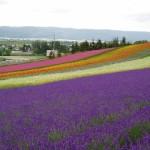 Información de la islas de Hokkaido