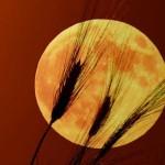 La Luna Llena de Octubre