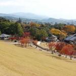 El Monte Wakakusayama y el fuego sagrado