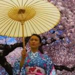Wagasa, el tradicional paraguas japonés