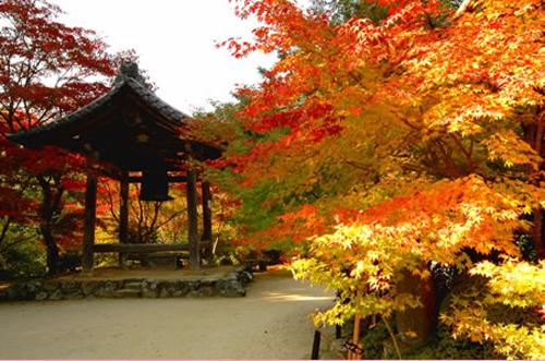 otoño en japon