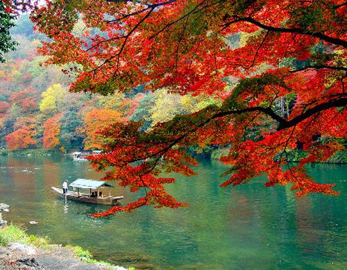 El Tiempo Juntos (Privado) Arashiyama11
