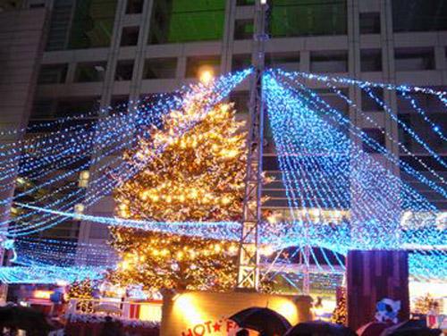 Los mejores rboles de navidad algunos extra os y hermoso - Los mejores arboles de navidad ...