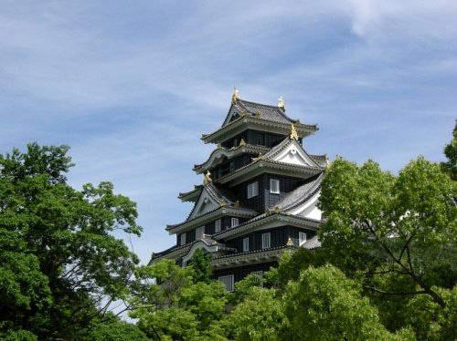 El negro Castillo Okayama