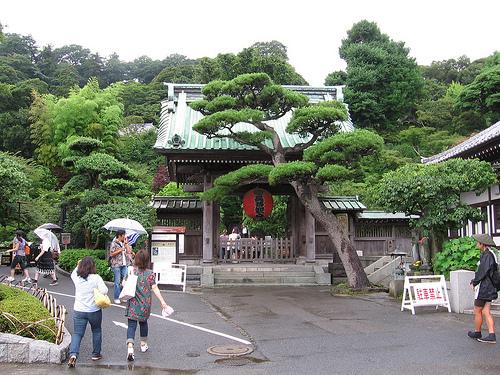 En Kamakura, el Templo Hasedera