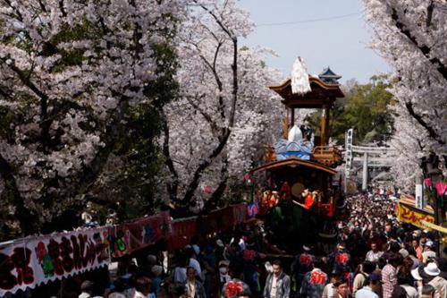 inuyama matsuri
