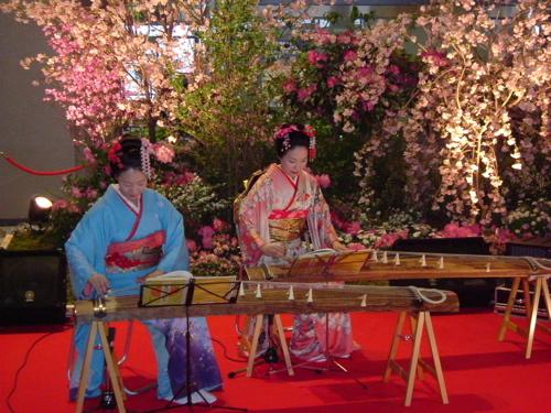 Koto, el instrumento musical japones