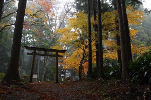 Kumano Kodo, el Camino de Santiago japonés
