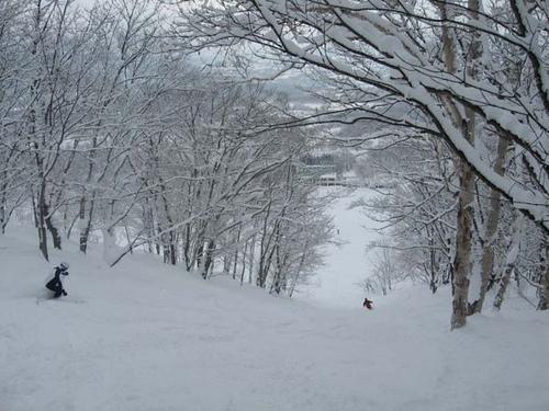 Niseko, principal centro de esquí en Japón