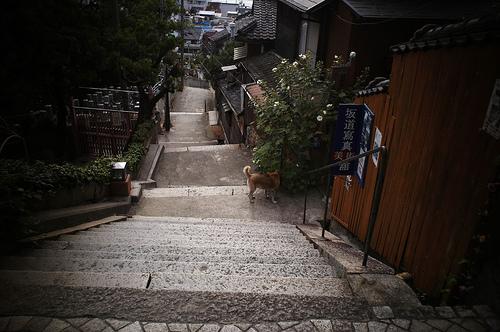 El Sendero de los Templos, en Onomichi