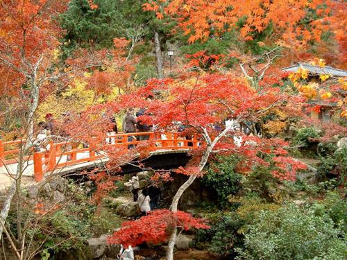 otono en japon