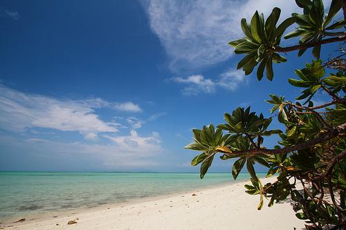 playa kondoi