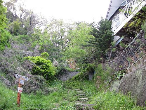 sendero daibutsu 2