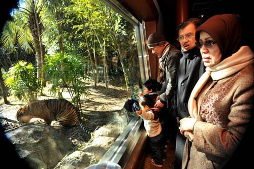 Zoorasia, el zoológico ecológico de Yokohama